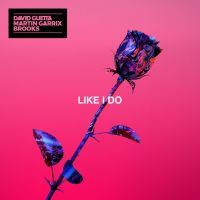 David Guetta, Martin Garrix & Brooks — Like I Do